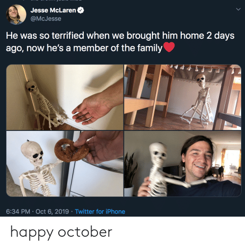2 Days: Jesse McLaren  @McJesse  He was so terrified when we brought him home 2 days  ago, now he's a member of the family  6:34 PM Oct 6, 2019 Twitter for iPhone  Tooses happy october