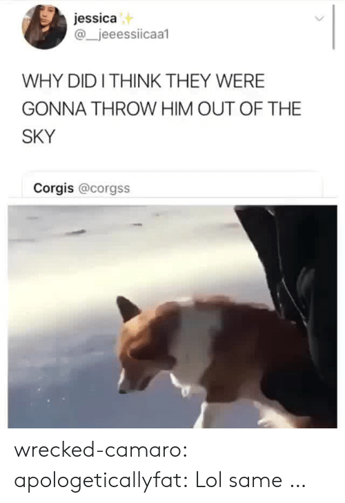 Camaro: jessica  @_jeeessiicaal  WHY DIDI THINK THEY WERE  GONNA THROW HIM OUT OF THE  SKY  Corgis @corgss wrecked-camaro:  apologeticallyfat: Lol same …