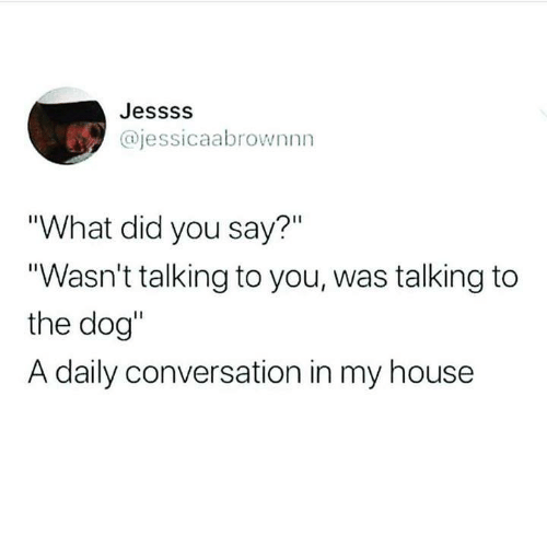 """Funny, My House, and Tumblr: Jessss  @jessicaabrownnn  """"What did you say?""""  """"Wasn't talking to you, was talking to  the dog""""  A daily conversation in my house"""