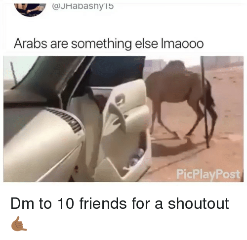 Friends, Memes, and Something Else: @JHabasnyib  Arabs are something else Imaoo0  PicPlayPost Dm to 10 friends for a shoutout 🤙🏾