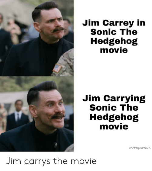 Sonic the Hedgehog: Jim Carrey in  Sonic The  Hedgehog  movie  Jim Carrying  Sonic The  Hedgehog  movie  urittymations  Uli Jim carrys the movie