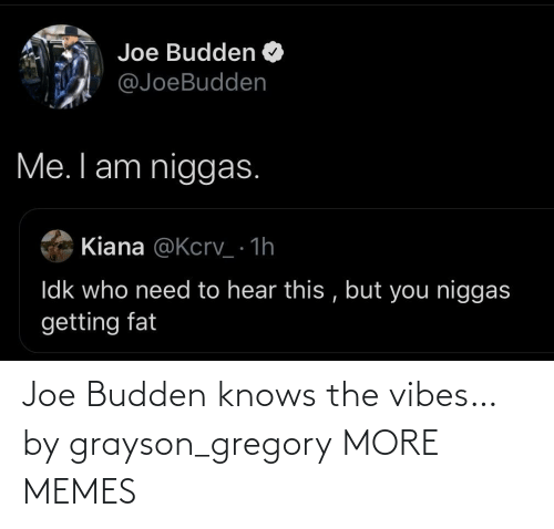 joe: Joe Budden knows the vibes… by grayson_gregory MORE MEMES