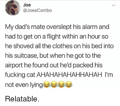 Clothes, Fucking, and Funny: Joe  @JoeeCambo  My dad's mate overslept his alarm and  had to get on a flight within an hour so  he shoved all the clothes on his bed into  his suitcase, but when he got to the  airport he found out he'd packed his  fucking cat AHAHAHAHAHHAHAH I'm  not even lying Relatable.