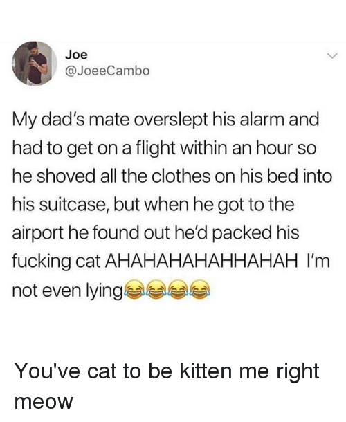 Overslept: Joe  JoeeCambo  My dad's mate overslept his alarm and  had to get on a flight within an hour so  he shoved all the clothes on his bed into  his suitcase, but when he got to the  airport he found out he'd packed his  fucking cat AHAHAHAHAHHAHAH I'm  not even lying You've cat to be kitten me right meow