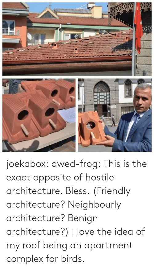 Complex: joekabox:  awed-frog:  This is the exact opposite of hostile architecture. Bless. (Friendly architecture? Neighbourly architecture? Benign architecture?)  I love the idea of my roof being an apartment complex for birds.