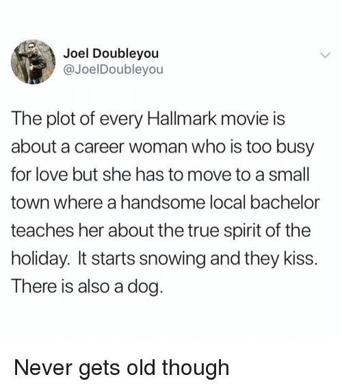 Hallmark: Joel Doubleyou  @JoelDoubleyou  The plot of every Hallmark movie is  about a career woman who is too busy  for love but she has to move to a small  town where a handsome local bachelor  teaches her about the true spirit of the  holiday. It starts snowing and they kiss.  There is also a dog. Never gets old though
