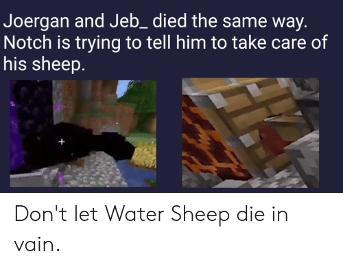 die-in-vain: Joergan and Jeb_died the same way.  Notch is trying to tell him to take care of  his sheep. Don't let Water Sheep die in vain.