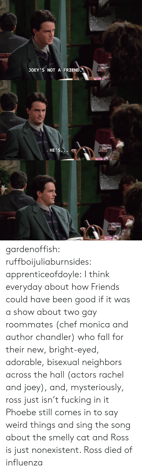 Chef: JOEY S NOT A FRIEND.   HE'S... gardenoffish: ruffboijuliaburnsides:  apprenticeofdoyle: I think everyday about how Friends could have been good if it was a show about two gay roommates (chef monica and author chandler) who fall for their new, bright-eyed, adorable, bisexual neighbors across the hall (actors rachel and joey), and, mysteriously, ross just isn't fucking in it Phoebe still comes in to say weird things and sing the song about the smelly cat and Ross is just nonexistent.    Ross died of influenza