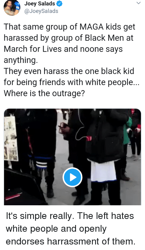 Friends, White People, and Black: Joey Salads  @JoeySalads  That same group of MAGA kids get  harassed by group of Black Men at  March for Lives and noone says  anything.  They even harass the one black kid  for being friends with white people...  Where is the outrage?