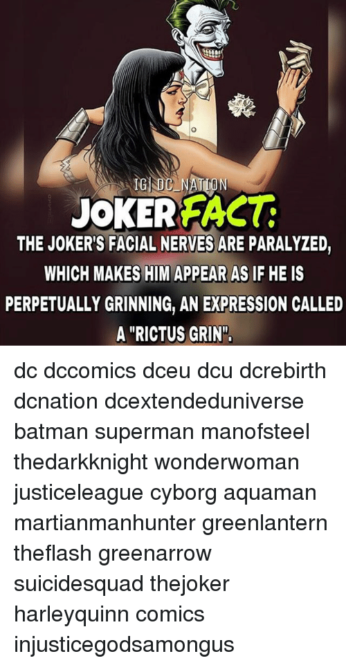 "Batman, Memes, and Superman: JOKE REACT  THE JOKER'S FACIAL NERVES ARE PARALYZED  WHICH MAKES HIM APPEAR AS IF HE IS  PERPETUALLY GRINNING, AN EXPRESSION CALLED  A ""RICTUS GRIN"". dc dccomics dceu dcu dcrebirth dcnation dcextendeduniverse batman superman manofsteel thedarkknight wonderwoman justiceleague cyborg aquaman martianmanhunter greenlantern theflash greenarrow suicidesquad thejoker harleyquinn comics injusticegodsamongus"