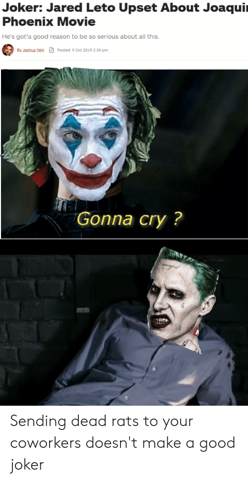 Joker, Reddit, and Good: Joker: Jared Leto Upset About Joaqui  Phoenix Movie  He's got a good reason to be so serious about all this.  By Joshua Yehl  Posted: 9 Oct 2019 2:36 pm  Gonna cry?  Dama Sending dead rats to your coworkers doesn't make a good joker