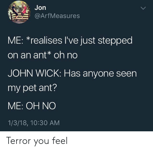 John Wick, Ant, and Wick: Jon  @ArfMeasures  ME: *realises I've just stepped  on an ant* oh no  JOHN WICK: Has anyone seen  my pet ant?  ME: OH NO  1/3/18, 10:30 AM Terror you feel
