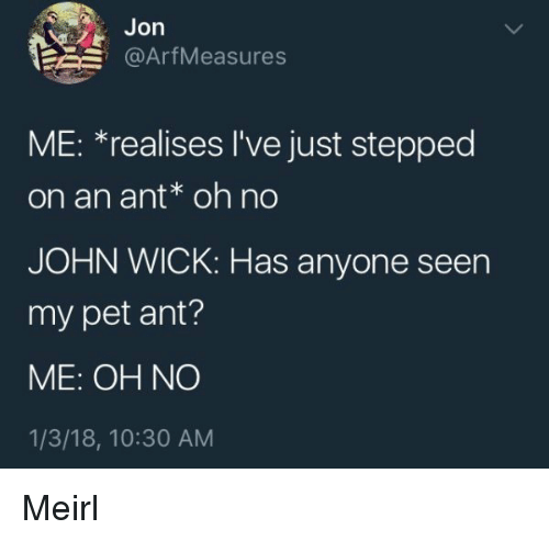 John Wick, MeIRL, and Ant: Jon  @ArfMeasures  ME: *realises l've just stepped  on an ant oh no  JOHN WICK: Has anyone seen  my pet ant?  ME: OH NO  1/3/18, 10:30 AM Meirl