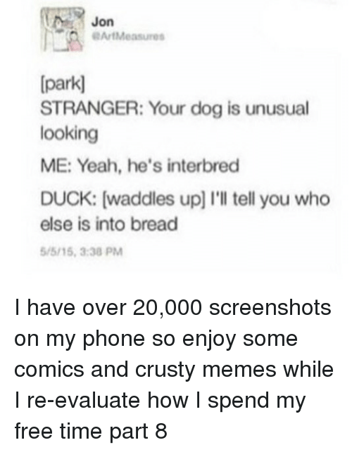 evaluate: Jon  OArtMeasures  [park]  STRANGER: Your dog is unusual  looking  ME: Yeah, he's interbred  DUCK: [waddles up] I'lI tell you who  else is into bread  /5/15,3:30 PM I have over 20,000 screenshots on my phone so enjoy some comics and crusty memes while I re-evaluate how I spend my free time part 8