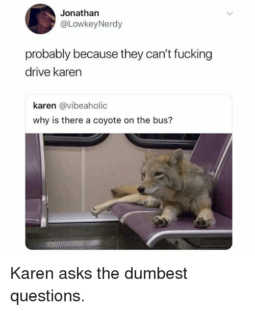 Fucking, Memes, and Coyote: Jonathan  @LowkeyNerdy  probably because they can't fucking  drive karen  karen @vibeaholic  why is there a coyote on the bus? Karen asks the dumbest questions.