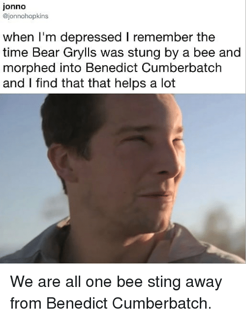 Bear Grylls: jonno  @jonnohopkins  when I'm depressed I remember the  time Bear Grylls was stung by a bee and  morphed into Benedict Cumberbatch  and I find that that helps a lot We are all one bee sting away from Benedict Cumberbatch.