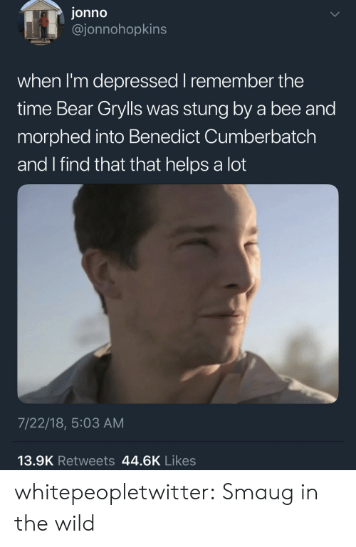 Bear Grylls: jonno  @jonnohopkins  when I'm depressed I remember the  time Bear Grylls was stung by a bee and  morphed into Benedict Cumberbatch  and I find that that helps a lot  7/22/18, 5:03 AM  13.9K Retweets 44.6K Likes whitepeopletwitter:  Smaug in the wild