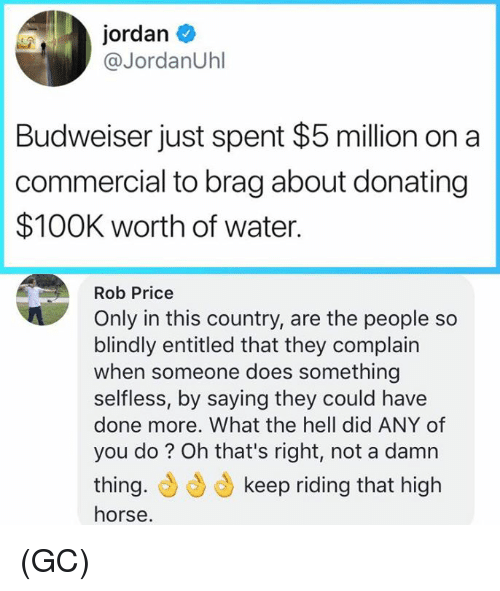 Memes, Horse, and Jordan: jordan  @JordanUhl  Budweiser just spent $5 million on a  commercial to brag about donating  $100K worth of water.  Rob Price  Only in this country, are the people so  blindly entitled that they complain  when someone does something  selfless, by saying they could have  done more. What the hell did ANY of  you do? Oh that's right, not a damn  thing.もらもkeep riding that high  horse (GC)