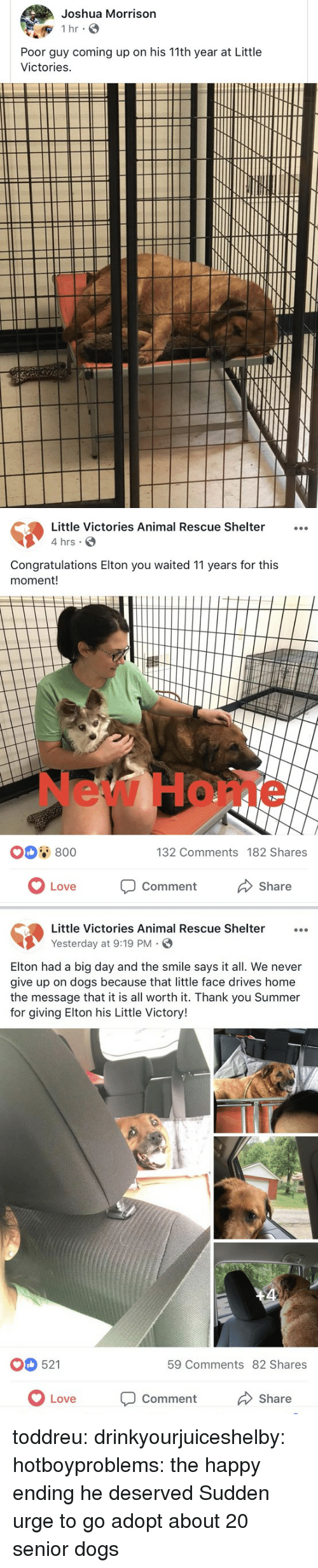 Dogs, Gif, and Love: Joshua Morrison  Poor guy coming up on his 11th year at Little  Victories   Little Victories Animal Rescue Shelter...  4 hrs  Congratulations Elton you waited 11 years for this  moment!  New Home  0 800  132 Comments 182 Shares  OLove  Comment  Share   Little Victories Animal Rescue Shelter  Yesterday at 9:19 PM.  Elton had a big day and the smile says it all. We never  give up on dogs because that little face drives home  the message that it is all worth it. Thank you Summer  for giving Elton his Little Victory!  521  59 Comments 82 Shares  Love Comment  Share toddreu:  drinkyourjuiceshelby:  hotboyproblems: the happy ending he deserved   Sudden urge to go adopt about 20 senior dogs