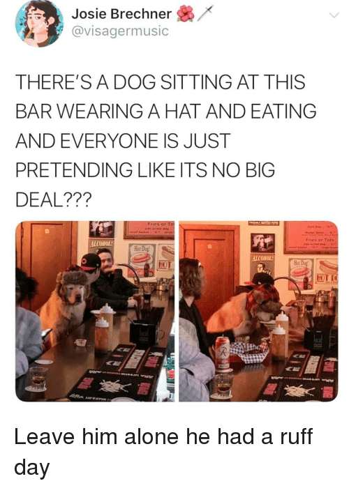 Being Alone, Memes, and Alcohol: Josie Brechner /  avisagermusic  THERE'SA DOG SITTING AT THIS  BAR WEARING A HAT AND EATING  AND EVERYONE IS JUST  PRETENDING LIKE ITS NO BIG  DEAL???  Fries ar  Fries or Tats  ALCOHOL  Hot Do  ALCOHOL  MOL Leave him alone he had a ruff day