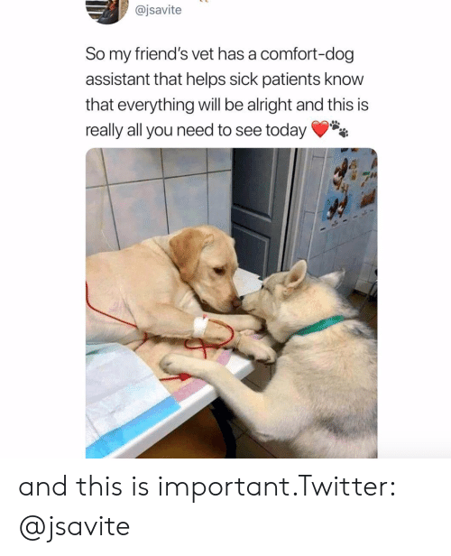 Friends, Twitter, and Today: @jsavite  So my friend's vet has a comfort-dog  assistant that helps sick patients know  that everything will be alright and this is  really all you need to see today* and this is important.Twitter: @jsavite