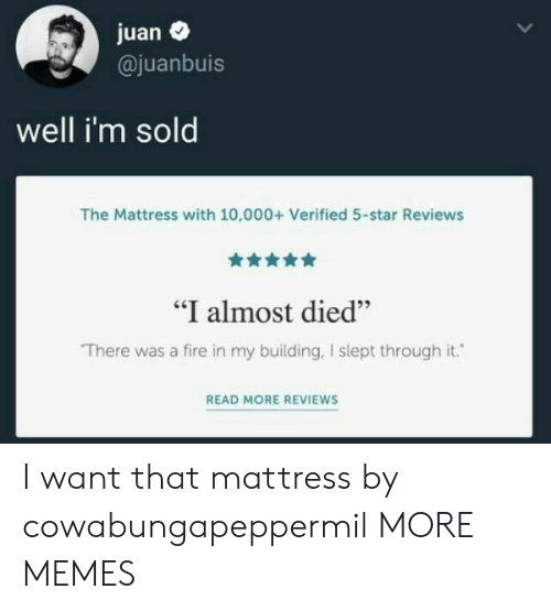 "Dank, Fire, and Memes: juan  @juanbuis  well i'm sold  The Mattress with 10,000+ Verified 5-star Reviews  ""I almost died""  There was a fire in my building, I slept through it.  READ MORE REVIEWS I want that mattress by cowabungapeppermil MORE MEMES"