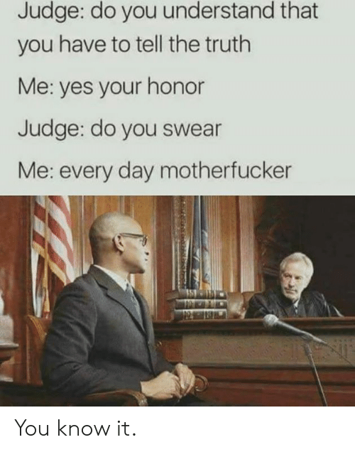 do you understand: Judge: do you understand that  you have to tell the truth  Me: yes your honor  Judge: do you swear  Me: every day motherfucker You know it.