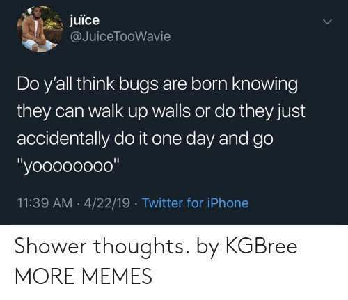 "Dank, Iphone, and Juice: juice  @JuiceTooWavie  Do y'all think bugs are born knowing  they can walk up walls or do they just  accidentally do it one day and go  ""yoooooooo""  11:39 AM 4/22/19 Twitter for iPhone Shower thoughts. by KGBree MORE MEMES"