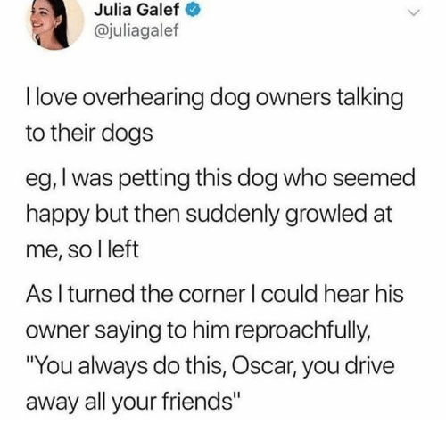 """All Your Friends: Julia  Galef  @juliagalef  I love overhearing dog owners talking  to their dogs  eg, I was petting this dog who seemed  happy but then suddenly growled at  me, so l left  As I turned the corner I could hear his  owner saying to him reproachfully,  """"You always do this, Oscar, you drive  away all your friends"""""""