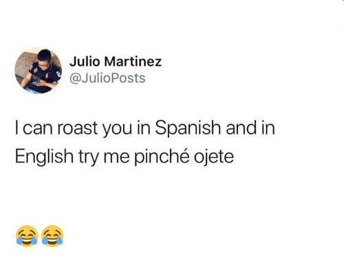 Martinez: Julio Martinez  @JulioPosts  Dp  I can roast you in Spanish and in  English try me pinché ojete 😂😂