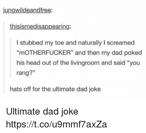 """Dads Jokes: jungwildeandfree:  thisismedisappearing:  I stubbed my toe and naturally I screamed  """"mOTHERFUCKER"""" and then my dad poked  his head out of the livingroom and said """"you  rang?""""  3  rang?""""  hats off for the ultimate dad joke Ultimate dad joke https://t.co/u9mmf7axZa"""