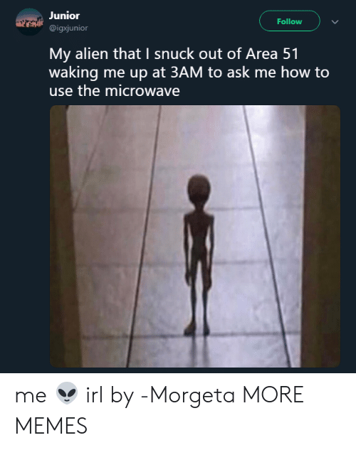 How To Use: Junior  Follow  @igxjunior  My alien that I snuck out of Area 51  waking me up at 3AM to ask me how to  use the microwave me 👽 irl by -Morgeta MORE MEMES