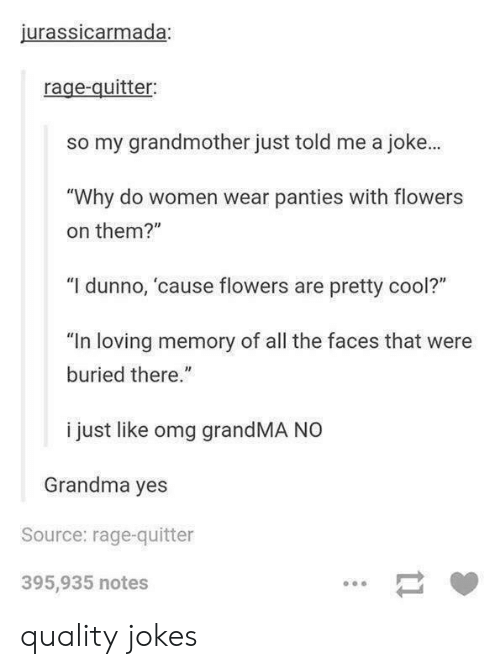 "Grandma, Omg, and Cool: jurassicarmada;  rage-quitter:  so my grandmother just told me a joke.  ""Why do women wear panties with flowers  on them?""  ""I dunno, cause flowers are pretty cool?""  ""In loving memory of all the faces that were  buried there.""  i just like omg grandMA NO  Grandma yes  Source: rage-quitter  395,935 notes quality jokes"