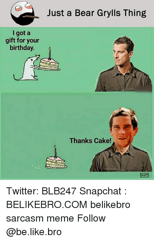 Bear Grylls: Just a Bear Grylls Thing  I got a  gift for your  birthday.  Thanks Cake!  MAT Twitter: BLB247 Snapchat : BELIKEBRO.COM belikebro sarcasm meme Follow @be.like.bro
