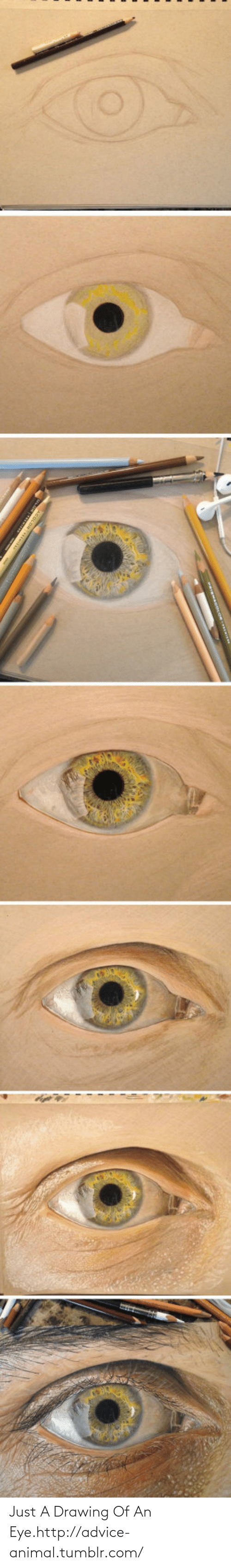 Drawing Of An: Just A Drawing Of An Eye.http://advice-animal.tumblr.com/