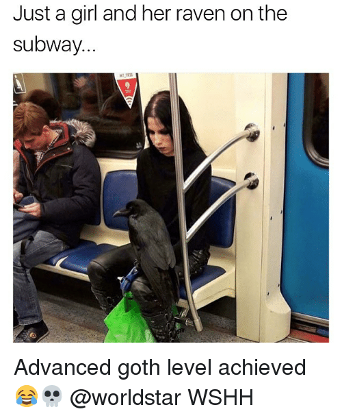 Memes, Subway, and Worldstar: Just a girl and her raven on the  subway. Advanced goth level achieved 😂💀 @worldstar WSHH