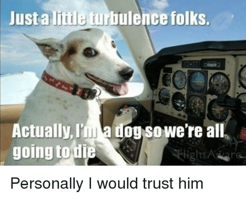 Turbulent: Just a liiile turbulence folks.  Actually, Ima dog So We're all  going to die Personally I would trust him