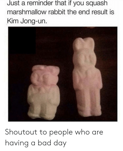 Bad, Bad Day, and Kim Jong-Un: Just a reminder that if you squash  marshmallow rabbit the end result is  Kim Jong-un. Shoutout to people who are having a bad day