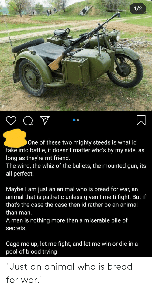 """bread: """"Just an animal who is bread for war."""""""