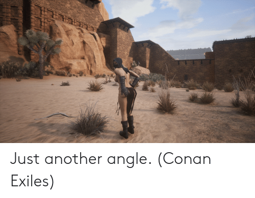 Conan Exiles Dedicated Server Cracked