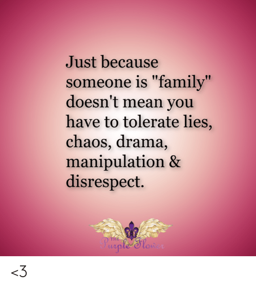 "Family, Memes, and Mean: Just because  someone is ""family""  doesn't mean you  have to tolerate lies,  chaos, drama,  manipulation &  disrespect.  THE  ple Slon <3"