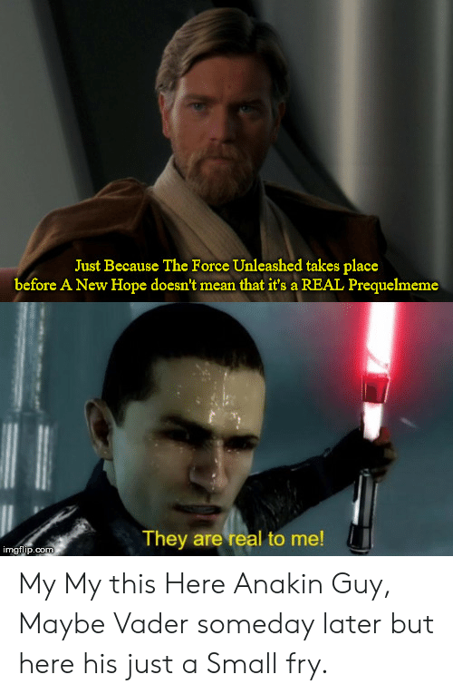 Mean, Hope, and Com: Just Because The Force Unleashed takes place  before A New Hope doesn't mean that it's a REAL Prequelmeme  They are real to me!  imgflip.com My My this Here Anakin Guy, Maybe Vader someday later but here his just a Small fry.