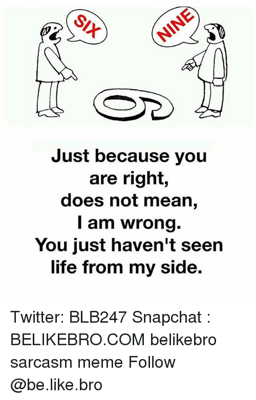 Be Like, Life, and Meme: Just because you  are right,  does not mean,  I am wrong.  You just haven't seen  life from my side. Twitter: BLB247 Snapchat : BELIKEBRO.COM belikebro sarcasm meme Follow @be.like.bro