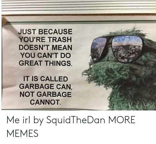 Dank, Memes, and Target: JUST BECAUSE  YOU'RE TRASHH  DOESN'T MEAN  YOU CAN'T DO  GREAT THINGS.  IT IS CALLED  GARBAGE CAN,  NOT GARBAGE  CANNOT Me irl by SquidTheDan MORE MEMES