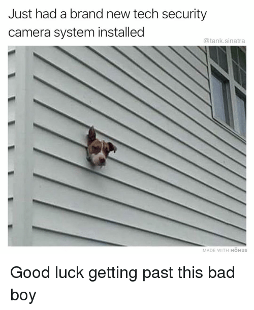 Bad, Funny, and Camera: Just had a brand new tech security  camera system installed  @tank.sinatra  MADE WITH MOMUS Good luck getting past this bad boy