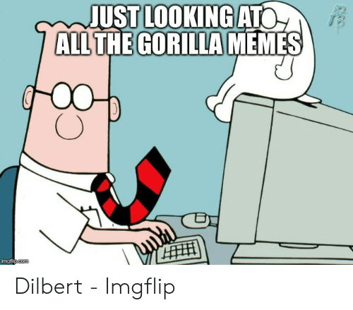 Memes, Dilbert, and All The: JUST LOOKING ATO  ALL THE GORILLA MEMES  HH  imgflipcom Dilbert - Imgflip