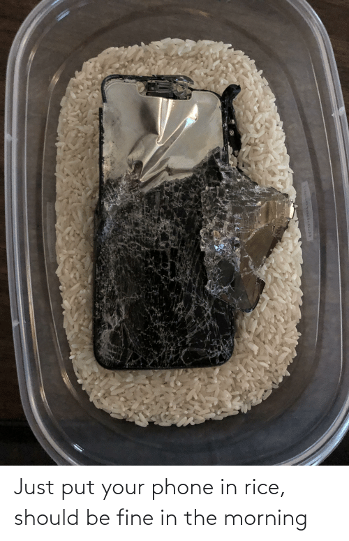 rice: Just put your phone in rice, should be fine in the morning