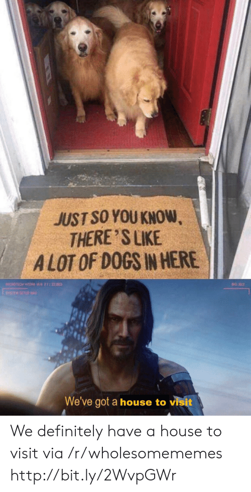 Definitely, Dogs, and House: JUST SO YOU KNOW,  THERE'S LIKE  ALOT OF DOGS IN HERE  MICROTECH HYDRA VER 2122.003  BIO 302  YSTEM SETUP NAV  We've got a house to visit We definitely have a house to visit via /r/wholesomememes http://bit.ly/2WvpGWr