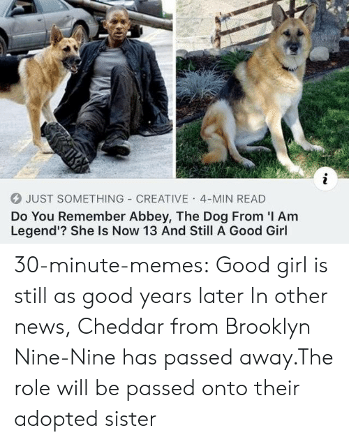 Nine Nine: JUST SOMETHING CREATIVE 4-MIN READ  Do You Remember Abbey, The Dog From I Am  Legend'? She Is Now 13 And Still A Good Girl 30-minute-memes:  Good girl is still as good years later  In other news, Cheddar from Brooklyn Nine-Nine has passed away.The role will be passed onto their adopted sister