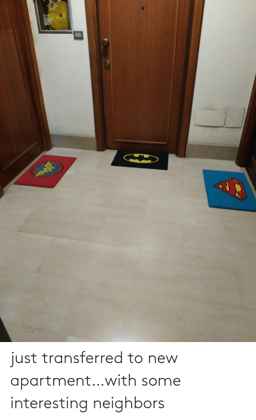 apartment: just transferred to new apartment…with some interesting neighbors